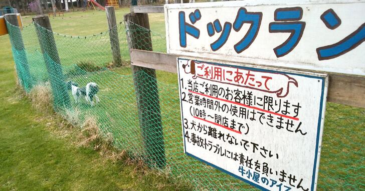 牛小屋のアイス_ドッグラン