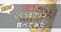 窯焼き北海道こくうまプリンカスタード食べてみた